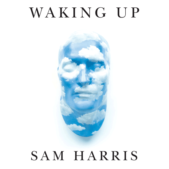 Image: Waking Up Podcast